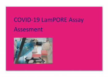 Individual Competency Assessment for COVID-19 LamPORE Assay
